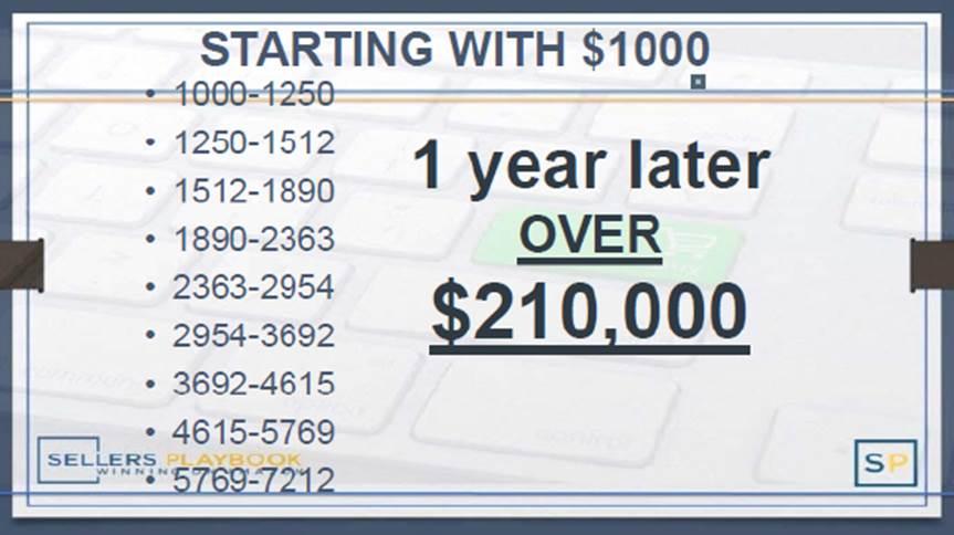 Sellers Playbook purported earnings visual