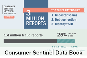 Consumer Sentinel Network Data Book