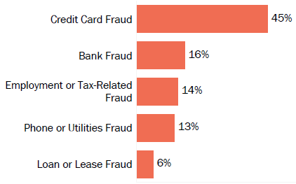 Graph of consumer reports of identity theft in Vermont by type in 2017. The type with the most reports was credit card fraud with 45 percent of reports, bank fraud with 16 percent, employment or tax-related fraud with 14 percent, phone or utilities fraud with 13 percent, and loan or lease fraud with 6 percent.